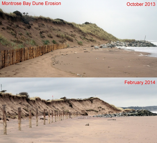 Erosion in Montrose bay October 2013 - February 2014